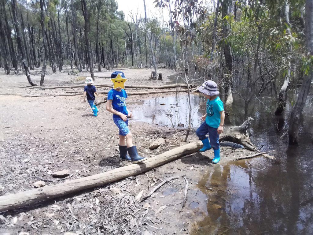 子供たちと近所の池へ散歩