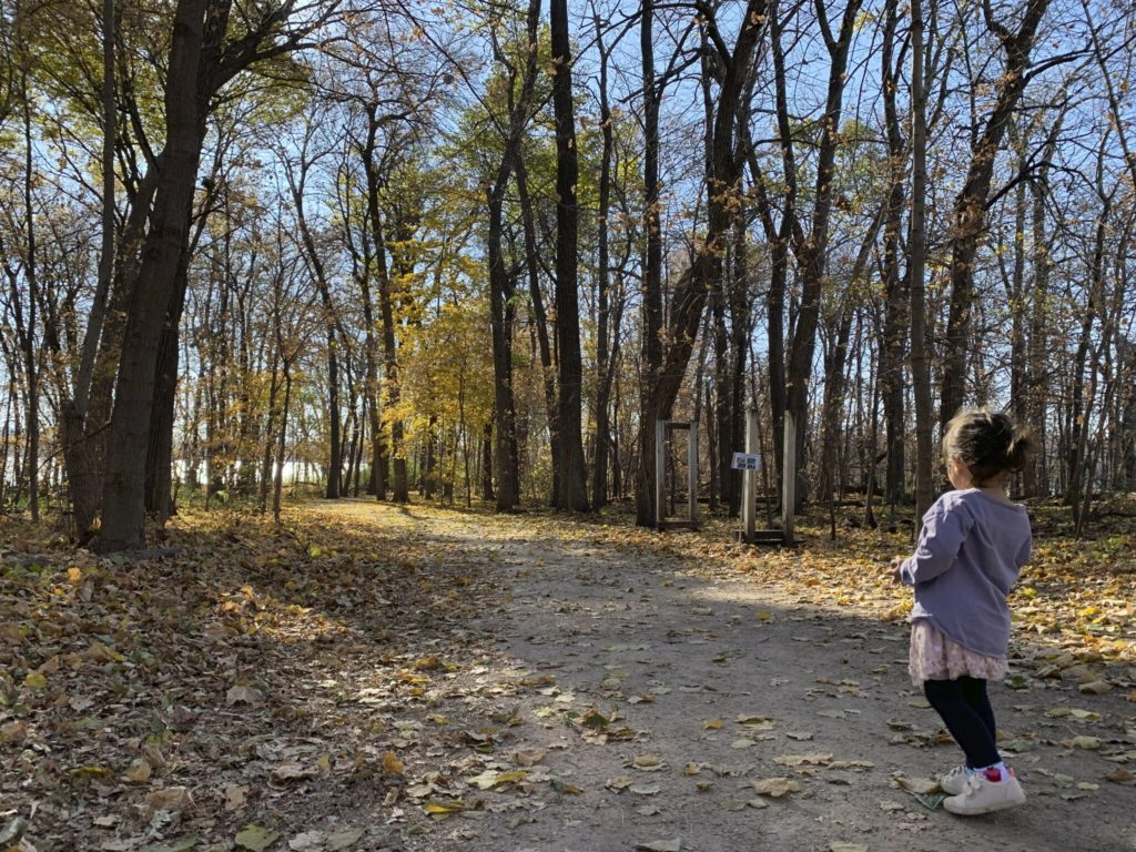 a girl is walking in the wood.